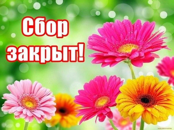http://telbukov-pavel.ucoz.ru/_nw/2/35555686.jpg